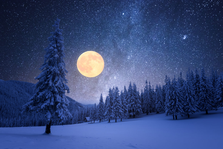 Winternacht mit Vollmond und Sternen mit schneebedeckten Tannenbäumen
